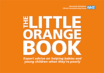 Little Orange Book cover